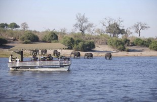 Chobe-Under-Canvase-Boat