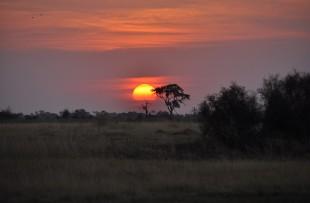 Okavango-Delta-Pixabay