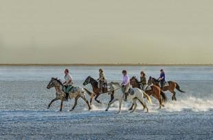 horse-riding-UASC-DH